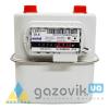 Счетчик газа G-2,5 Metrix  - Счетчики  - интернет-магазин Газовик - уменьшенная копия