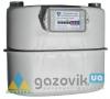 Счетчик газовый G-6, октава - Счетчики  - интернет-магазин Газовик - уменьшенная копия
